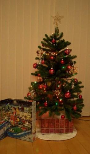 クリスマスツリー出しました~♪